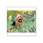 Irises - Aussie Terrier Square Sticker 3