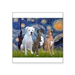 Starry / 3 Boxers Square Sticker 3
