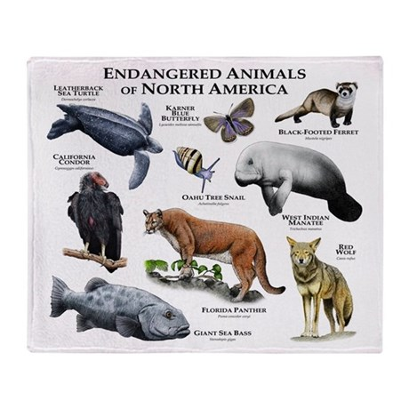 Endangered Species of North America Stadium Blank