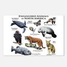 Endangered Species of North America Postcards (Pac