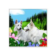WHITE GERMAN SHEPHERD DOGS Square Sticker