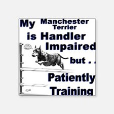 Manchester Terrier Agility Square Sticker