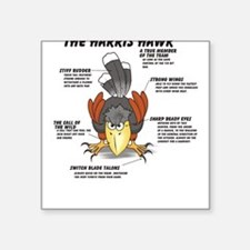 The Harris Hawk Square Sticker