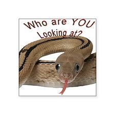 Transpecos Rat Snake Square Sticker