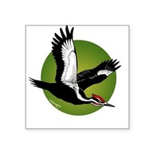 Pileated Woodpecker Square Sticker
