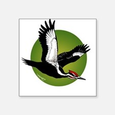 Pileated Woodpecker Square Sticker