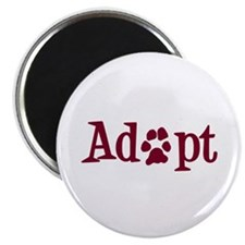 Adopt (With Paws) Magnet