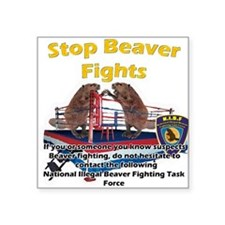 Stop Beaver Fights Square Sticker