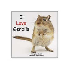 I Love Gerbils Square Sticker