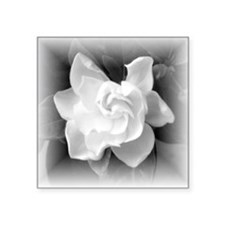 Gardenia Blossom Square Sticker