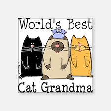 World's Best Cat Grandma Square Sticker