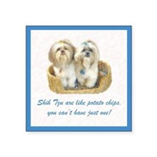 Shih Tzu Pop Art Ziggy & Nemo Square Sticker