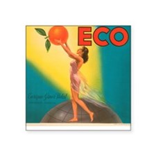 ECO Orange Vintage Crate Labe Square Sticker