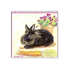 Lionhead rabbit Square Sticker