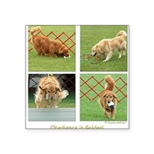 Golden Retriever Obedience Square Sticker