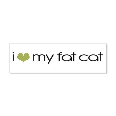 I Heart My Fat Cat Car Magnet 10 x 3