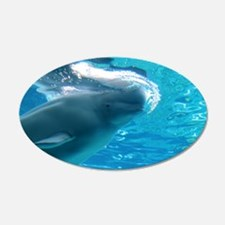 Close up of a Beluga Whale 2 22x14 Oval Wall Peel