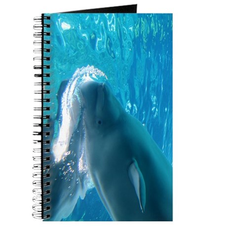 Close up of a Beluga Whale 2 Journal