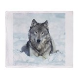 Snowy Fleece Blankets