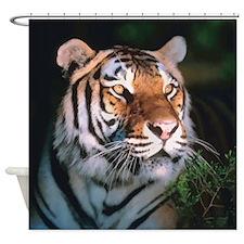 Tiger At Night Shower Curtain