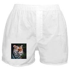 Tiger At Night Boxer Shorts