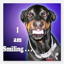 Doberman Pinscher Smiles Square Car Magnet