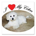 I heart my Coton Square Car Magnet