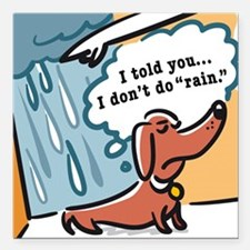 Dachshunds hate rain Square Car Magnet