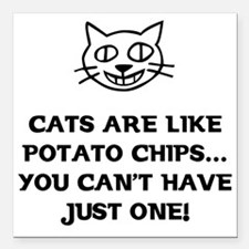 Cats are like Potato Chips Square Car Magnet