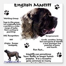 Fluffy Mastiff 23 Square Car Magnet