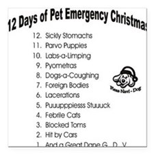 Pet Emergency Christmas Square Car Magnet