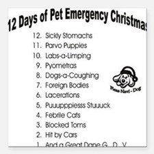 Pet Emergency Christmas Square Car Magnet