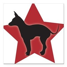 Mexican Hairless Square Car Magnet