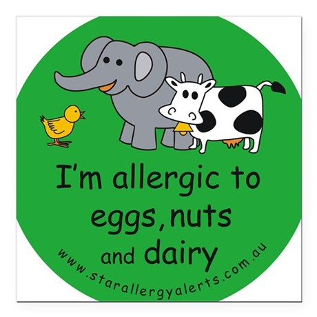 Eggs, nuts and dairy Square Car Magnet