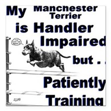 Manchester Terrier Agility Square Car Magnet
