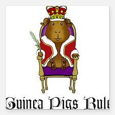 Guinea Pigs Rule Square Car Magnet