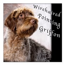 Wirehaired Pointing Griffon Square Car Magnet