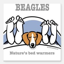 Beagle bed warmers Square Car Magnet
