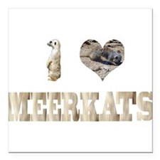 i love meerkats Square Car Magnet
