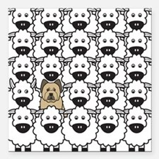 Briard in the Sheep Square Car Magnet
