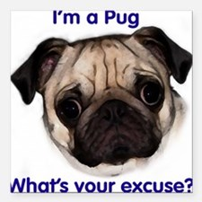 """""""I'm a Pug - what's your excu Square Car Magnet"""