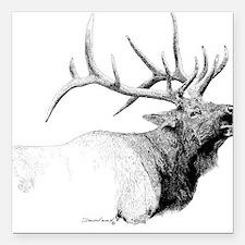 Bull Elk Square Car Magnet