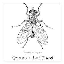 Geneticists' Best Friend Square Car Magnet