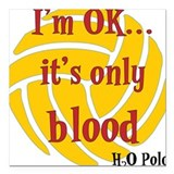 Waterpolo Square Car Magnets