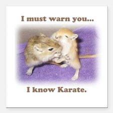 I know karate Square Car Magnet