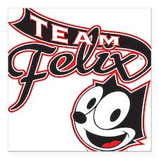 Team Felix Square Car Magnet
