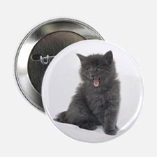 "JESYCAT! 2.25"" Button (10 pack)"
