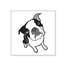 "Boston Terrier Square Sticker 3"" x"