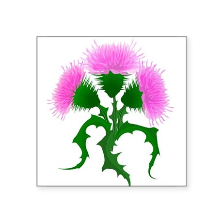 """22066083thistle trans.png Square Sticker 3"""" x 3"""""""