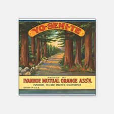 "063yosemite oranges.png Square Sticker 3"" x 3"""